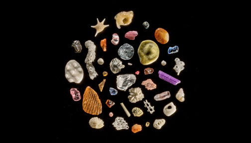 A collection of sand particles from around the world